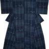 藍染の手紡ぎ木綿 絵絣格子着物